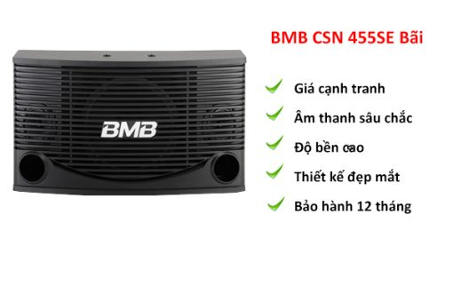 Loa BMB CSN 455E bãi