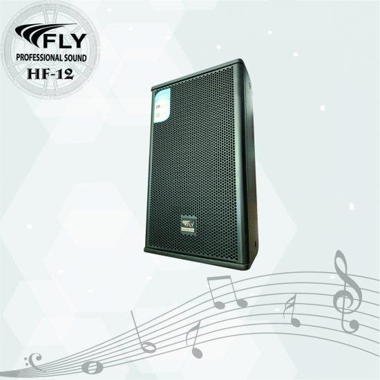 Loa karaoke Fly H12 Pro
