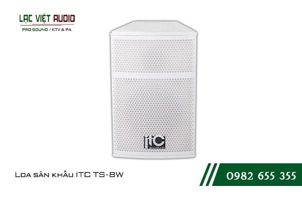 Giới thiệu về sản phẩm Loa sân khấu ITC TS8W