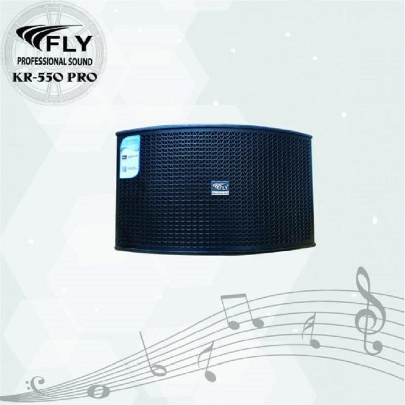 Loa karaoke bass 25 FLY KR550