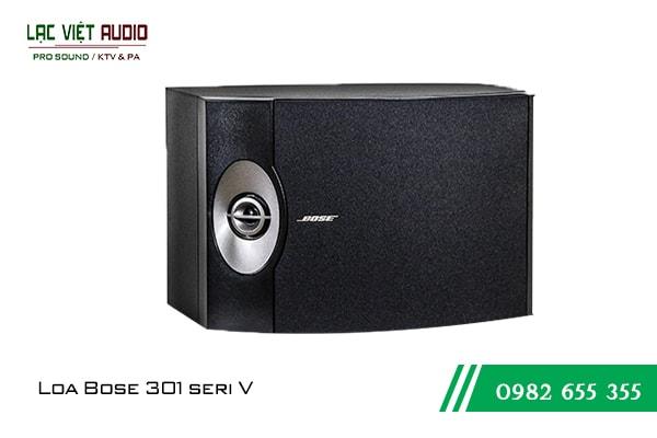 Loa karaoke Bose 301 seri V