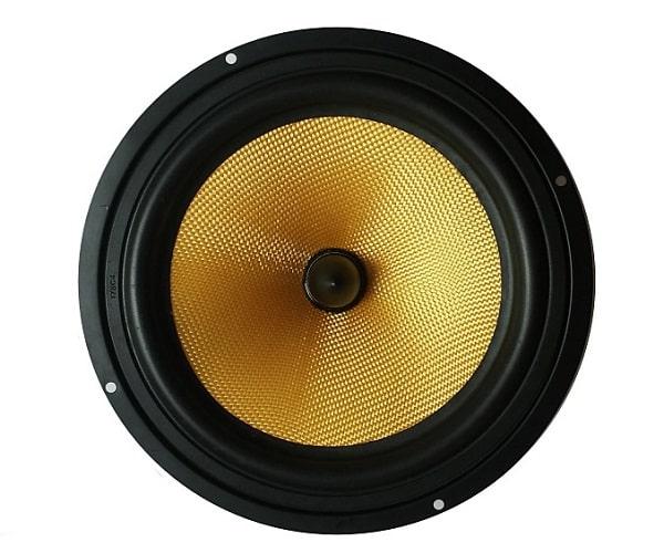 Màng loa dao động tạo ra âm thanh