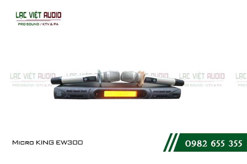 Giới thiệu về sản phẩm micro KING EW 300