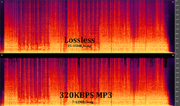 Phổ nhạc của Lossless và nhạc MP3