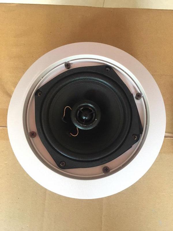 Loa âm trần Bluetooth đồng trục chất lượng