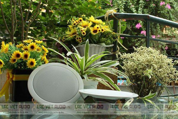 Mua các sản phẩm loa âm trần DB chính hãng chất lượng cao tại Lạc Việt Audio