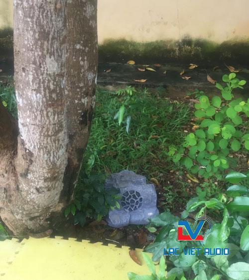 Loa giả đá đặt dưới gốc cây trông y như thật