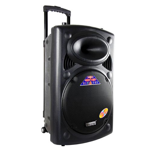 Loa kéo Temeisheng DP-2305L chất lượng giá rẻ