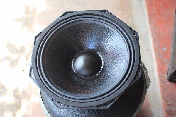 Bass loa chất lượng Loa Nexo Ps12