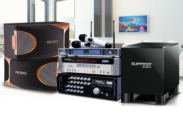 Loa Sub điện thường xuyên góp mặt trong các dàn karaoke gia đình
