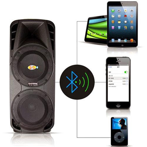 Loa kéo Temeisheng A86 tích hợp tính năng Bluetooth