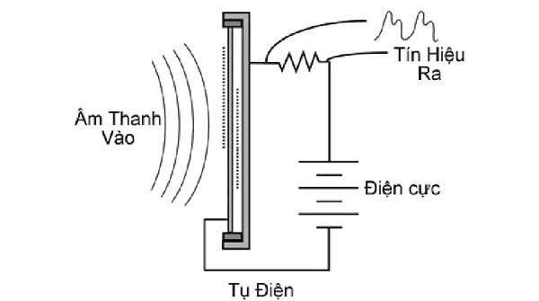 Nguyên lý hoạt động micro condenser
