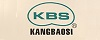 Micro không dây KBS